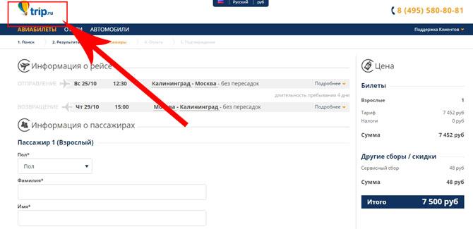 как можно купить билет на самолет через интернет